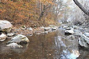 Galda River - Alchetron, The Free Social Encyclopedia