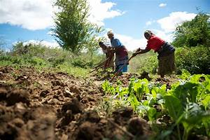 A Kenyan Smallholder Speaks Up For Farmers Around the ...