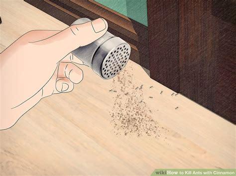 naturally  rid  ants  cinnamon wikihow