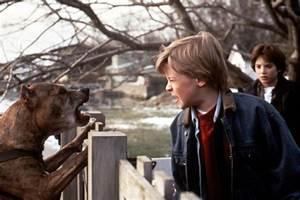 Cineplex.com | The Good Son