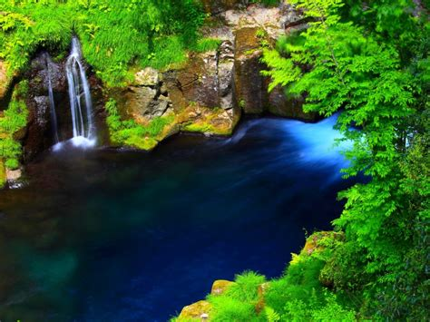 river forest waterfall lake blue water rocky coast