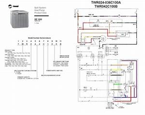 Trane Thermostat Installation Manual