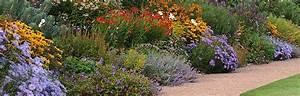 Plantes Vivaces Pour Massif : cr er facilement votre massif de vivaces comment faire ~ Premium-room.com Idées de Décoration