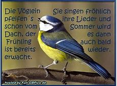 Frühlings Grüße Sprüche Bild Facebook BilderGB Bilder