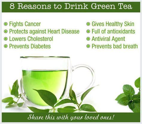 Green Tea Health Benefits   Crash Course