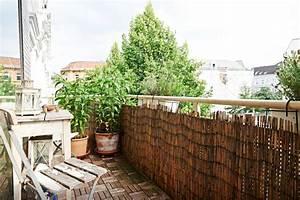 Bambus Auf Balkon : smarte idee geflochtener bambus zaun als sichtschutz f r den balkon au erdem sorgen pflanzen ~ Eleganceandgraceweddings.com Haus und Dekorationen