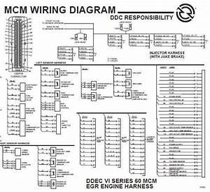 Bv 8895  Ddec 5 Wiring Schematic Schematic Wiring