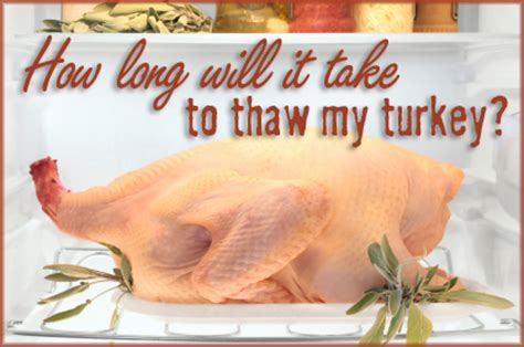 how does it take to defrost a turkey top 28 how does it take to thaw a turkey how to defrost a turkey 7 charts that make