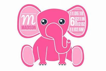 Birth Stats Svg Elephant Template Boy Announcement