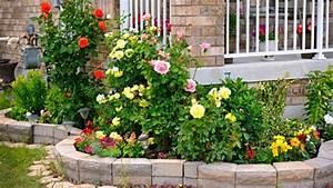 Blumenbeete Zum Nachpflanzen : rosenbeet anlegen beachtenswertes und anleitung ~ Yasmunasinghe.com Haus und Dekorationen