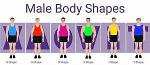 Male Body Type Calculator