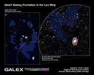 Leo Dwarf Galaxy