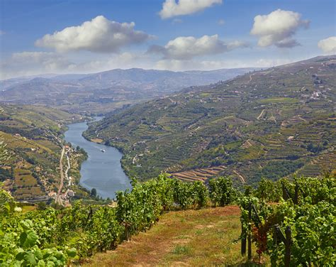 Boat Trip Douro by Day Trip In Douro Valley With Lunch Boat Trip And
