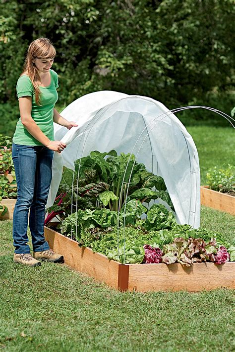 how to start a vegetable garden how to start a winter vegetable garden