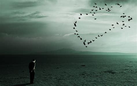 Image result for خداحافظ عشق
