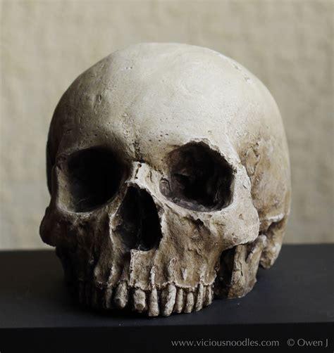 human skull replica full size realistic replica