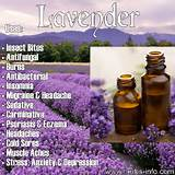 Photos of Lavender Oil Uses