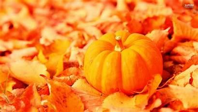 Backgrounds Pumpkins Fall Pumpkin Wallpapersafari