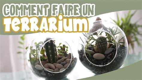 terrarium diy comment faire un terrarium