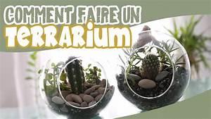 Comment Entretenir Un Cactus : terrarium diy comment faire un terrarium youtube ~ Nature-et-papiers.com Idées de Décoration