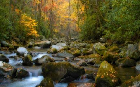 creek pictures - HD Desktop Wallpapers   4k HD