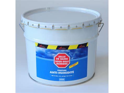 peinture anti moisissure anti humidit 233 murs humides contact arcane industries