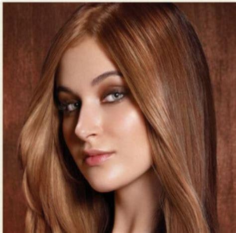 rich brown hair color rich brown hair dye color picture locks