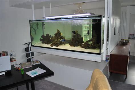 entretien d un aquarium de 400 litres en eau douce bien