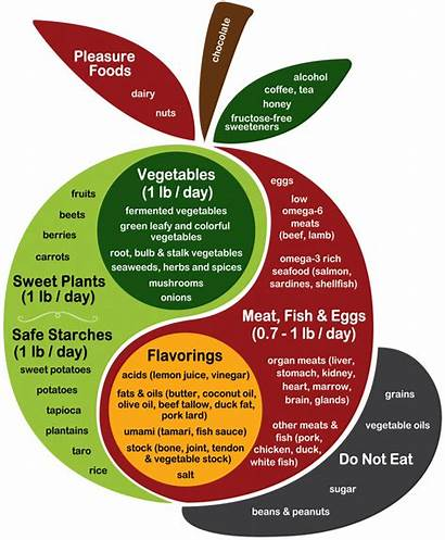 Diet Plate Health Perfect Phd Foods Paleo