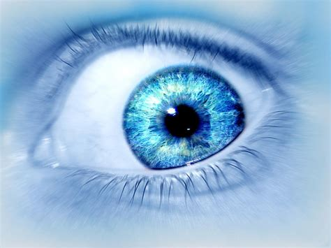 A collection of the top 46 blue eyes wallpapers and backgrounds available for download for free. HD Eye Wallpaper - WallpaperSafari