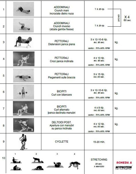 esercizi  aumentare massa muscolare