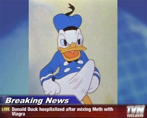 Donald Duck Meme - donald duck boner know your meme