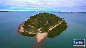Turtle Island - entire freehold tropical island for sale ...