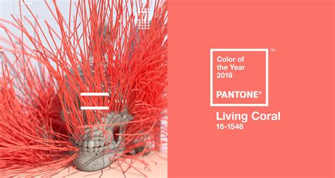 living coral  colour   year home  interior