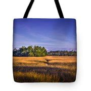 Hammock In A Bag Target by Marsh Hammock Photograph By Marvin Spates