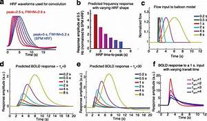 Fast Fmri Can Detect Oscillatory Neural Activity In Humans