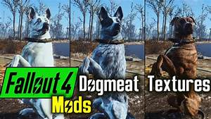 Dogmeat Textures Skins Mods For Fallout 4 YouTube