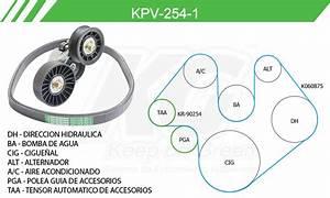 Green Autopartes  Kit De Accesorios Con Banda Poly