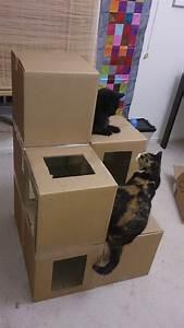 Katzenspielzeug Selber Machen Karton : 8 clevere gestaltungsideen f r dein leben mit katze watson paula pinterest ~ Frokenaadalensverden.com Haus und Dekorationen
