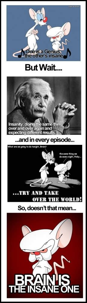 Pinky And The Brain Quotes Youtube
