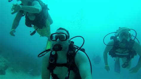 scuba diving  st thomas youtube