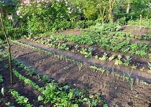 Gemüsegarten Anlegen Für Anfänger : gem segarten anlegen beispiele nowaday garden ~ Whattoseeinmadrid.com Haus und Dekorationen