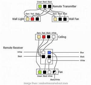 Zing  Ceiling  Switch Wiring Diagram Practical Ceiling
