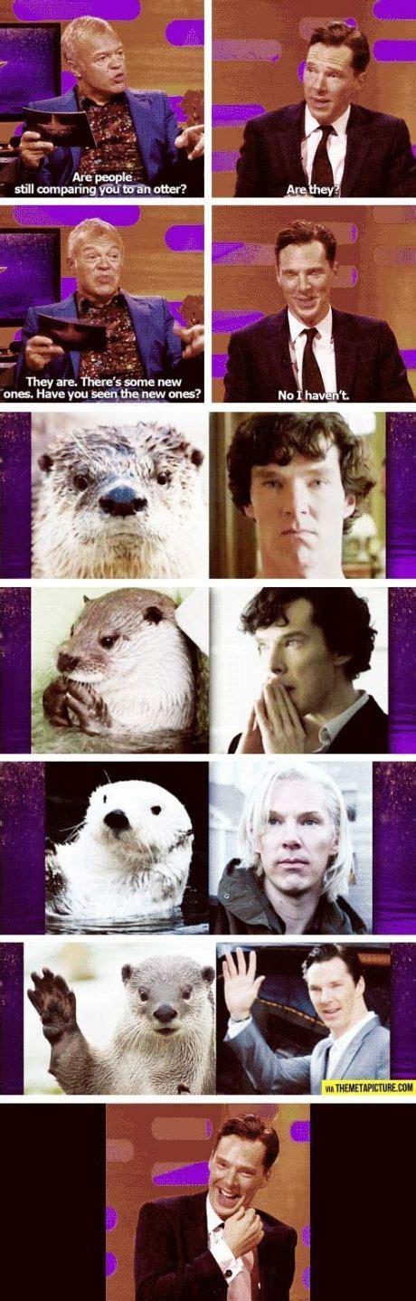 Benedict Cumberbatch Otter Meme - benedict compared to an otter sherlock benedict otters otter cumberbatch benedict