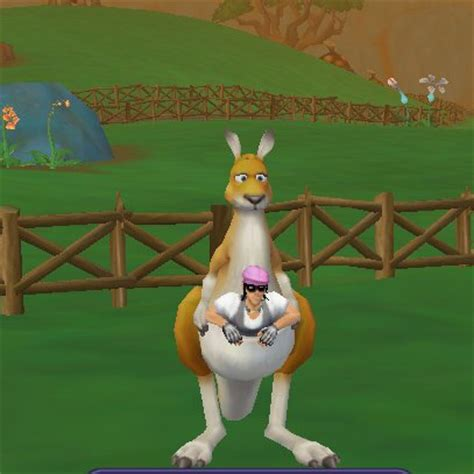 Free Realms Description And Comments Image Kangaroo Ride Jpg Freerealms Wiki Fandom