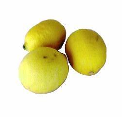 citroensap s morgens