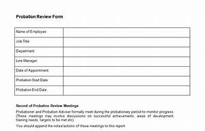 Probation review form template bizorb for Probation meeting template