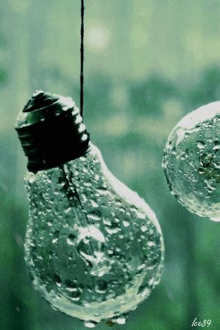 light bulbs  rain mobile screensavers
