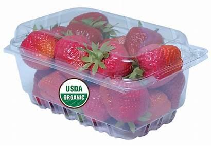 Packaging Plastic Mockup Package Strawberry Organic Grows