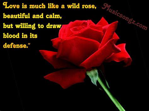 red rose love quotes quotesgram
